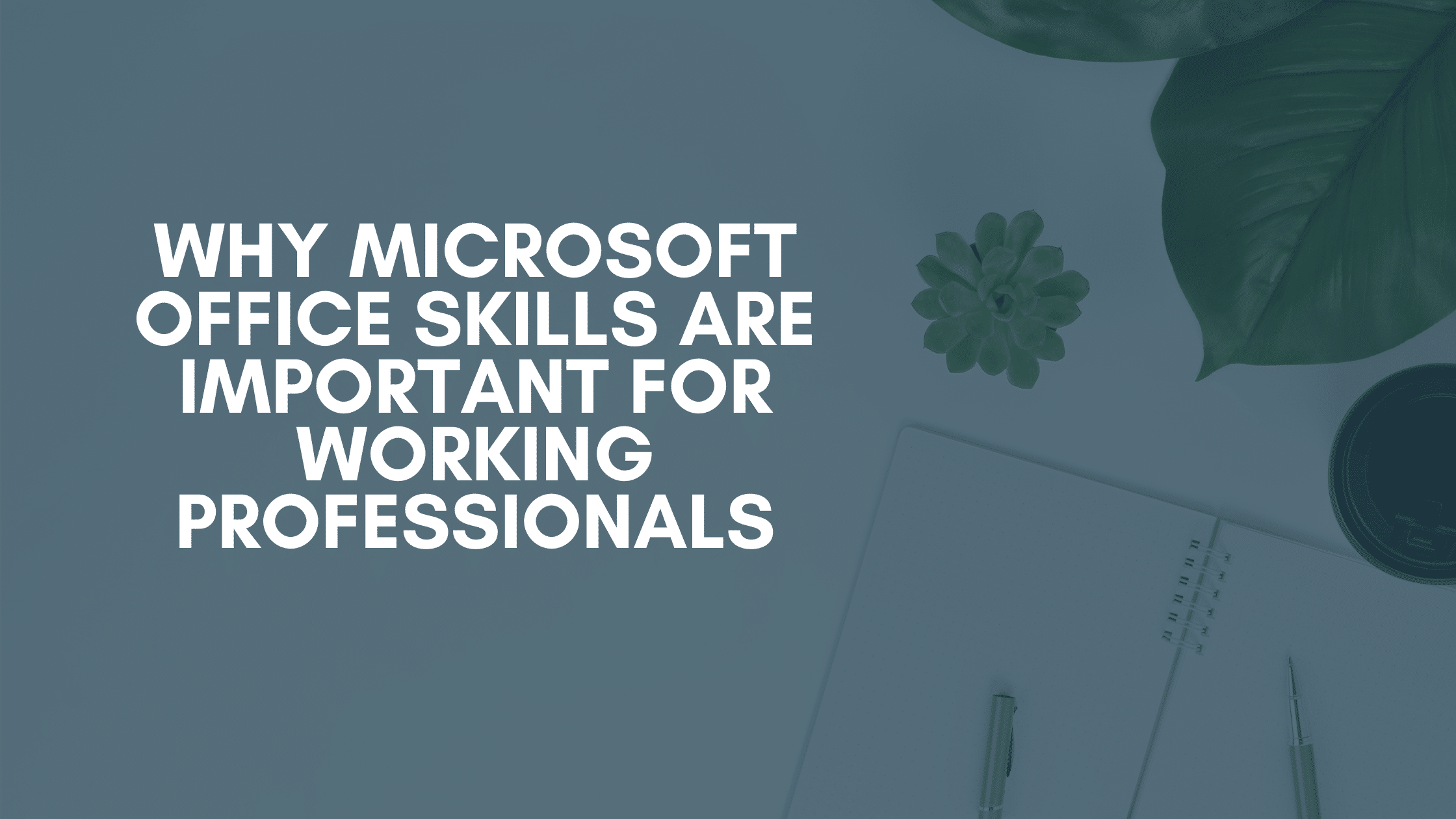 Why Microsoft Office Skills are Important for Working Professionals